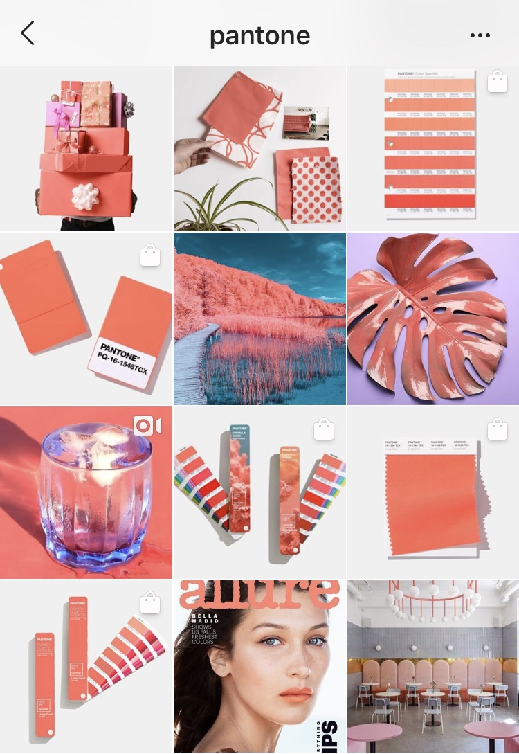 26 Instagram Feed Themes That Will Give You Instant Inspiration
